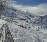 שלג לבן\אלכסנדר רוזנבאום