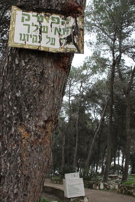 פארק 2